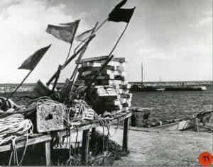 Fotoarkivet på webben.